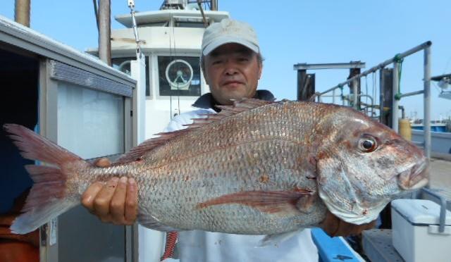 テンヤ真鯛船 大鯛5.2キロ!