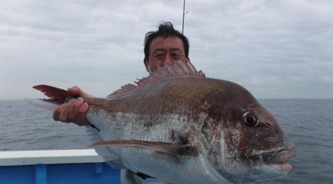 テンヤ真鯛船 大鯛4.3キロ!